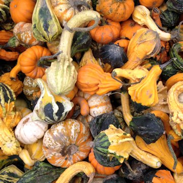 Decorate With Gourds For Halloween